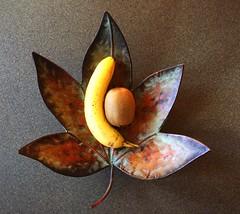 The Morning Fruits (Joseph Cerulli) Tags: fruit leaf banana kiwi josephcerulli