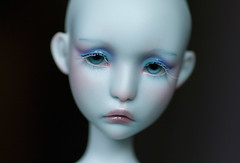 IMG_4508 (greenwolfy) Tags: makeup bjd manon faceup lillycat cerisedolls