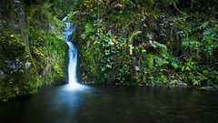 Waterfall (Sijie Shen) Tags: autumn trees black color leaves horizontal forest germany landscape waterfall europe long exposure image schwarzwald oppenau