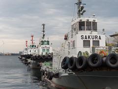Tugboat  brothers (StellaInerrans) Tags: japan tugboat yokohama