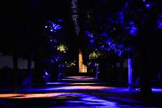Chartres en Lumières 2015 - Jardins de l'Evêché