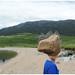 Loch Assynt creature