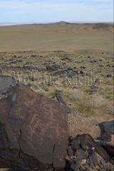 30095302 (wolfgangkaehler) Tags: old animal animals rock asian ancient asia desert mongolia centralasia petroglyph gobi blackmountains petroglyphs ibex mongolian gobidesert southernmongolia