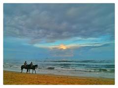 Patrolling the Sea (Alan Vel) Tags: india madras transport police marinabeach chennai seashore tamil patrol tamilnadu horseriding southindia bayofbengal santhome mylapore triplicane merinabeach chennaimetro tamilnadutourism longestbeach