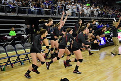2015 B Volleyball - Chester Area v Warner (SD Public Broadcasting) Tags: sports tournament volleyball championships sdpb southdakotahighschoolactivities sdhsaa