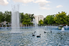 Konya - Cultural Park Duck House Sultanah Caddesi 4 (Le Monde1) Tags: park turkey waterfall nikon islam sultan turkish duckhouse dervish anatolia moslem whirlingdervishes culturalpark kltr sinanpasha d7000 lemonde1 hasanpasha sultanahcaddesi fatmahtun