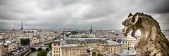 Paris (Zeeyolq Photography) Tags: paris