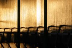 Morning Light (mac.black) Tags: morning light wet water backlight sunrise waterdrop wasser drop tau kalt sonnig sonne sonnenaufgang morgen morningdew wassertropfen tropfen gegenlicht morgentau baumarkt feucht morgenstimmung