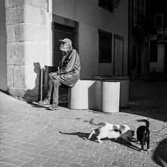 And the days go by... (Srgio Miranda) Tags: street blackandwhite bw 6x6 portugal monochrome mediumformat photography streetphotography porto ilford ilforddelta400 analogphotography oporto 120mm kiev88 delta400 filmphotography ilforddelta kiev88cm filmisnotdead analoguephotography squarephotography sergiomiranda