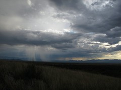 Isolated Thundershowers (zoniedude1) Tags: arizona sky clouds rain sunset monsoon isolatedthundershowers summer evening downpour seaz cochisecounty landscape view arizonamonsoon skyscape thunderstorms stormclouds summermonsoon tstorm monsoon2016 sanpedrovalley southeastarizona landofcochise 5200ftelevation skyislands outdoors exploration adventure discovery wildplaces outinthewild southwest nature canonpowershotg12 pspx8 zoniedude1 earthnaturelife