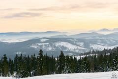 Z Rysianki w stronę Małej Fatry (czargor) Tags: beskidzywiecki wgoryzima winter winterinthemountains skituring