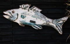 Sur le mur d'une cabane de pêcheurs (Larch) Tags: poisson fish sculpture bouzigues france portdebouzigues étangdethau planche cabane pêcheur board fishinghut mur wall extérieur outside hérault