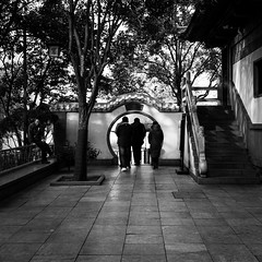 Bye bye (Go-tea 郭天) Tags: street urban city outside outdoor people bw bnw black white blackwhite blackandwhite monochrome asia asian china chinese shandong canon eos 100d 24mm prime baotu springs back backside men woman old door gate round jinanshi shandongsheng chine cn cross crossing crossed traditional tradition building house history historical historic trees winter cold group together team spy alone side coats exit bye leave jinan leaving lonley