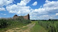 Via Francigena - Pavia - Santa Cristina