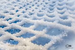 """""""Frozen net"""" (anton_zach) Tags: eis eiskristalle netz schnee winter outdoor weiss"""