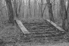 1Z9A7223 (mizzbritta) Tags: 2017 abandoned abandonedplaces abandonedbuildings urbex urbanexploration germany eastgermany krampnitz
