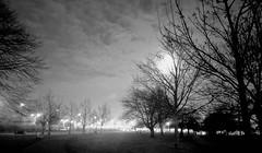 Evening sparks 💡  #lawofattraction #moon #light #silhouette #grateful #cloudporn #dusk #clouds #landscapelovers #landscape #nikon #naturelovers #nature #bnw #amateurs_bnw #noiretblanc #bnw_of_our_world #bnw_captures  #blackandwhite (jophipps1) Tags: blackandwhite nikon landscape landscapelovers moon silhouette bnwofourworld amateursbnw clouds noiretblanc bnw cloudporn lawofattraction light nature bnwcaptures dusk naturelovers grateful