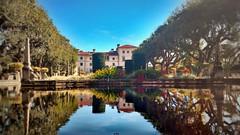 Vizcaya Mansion, Miami, FL (maxwilensky) Tags: florida miami mansion tropical water reflection sky trees vizcaya