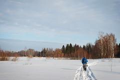 Кто-то уходит вперед, а кто-то идет позади.. Труден путь в снегах.