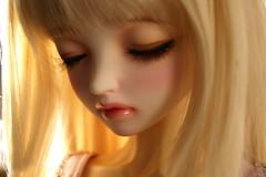 DSC05502 (yoshimitsudoll) Tags: leekeworld noella sp