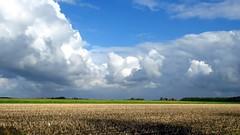 IMG_3053 nuvole d'estate (La Patti) Tags: agosto august holland olanda landscape outdoor clouds estate summer colori colors nature natura howerd frisia paesi bassi holwerd panorama paesaggio sky nubi nuvolo cloud cloudy nuvole all'aperto