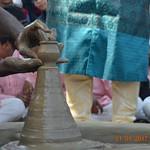 Pot Making ngp (75)