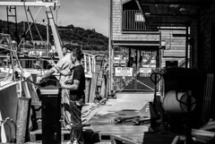 Catch of the day (sheepphotography017) Tags: trip summer bw sun holiday fish contrast boats boat fishing cornwall shadows harbour exploring sunny explore blacknwhite exploration trawler edit looe brauty