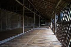IMG_2457 (Cthonus) Tags: geotagged malaysia borneo longhouse rungus runguslonghouse