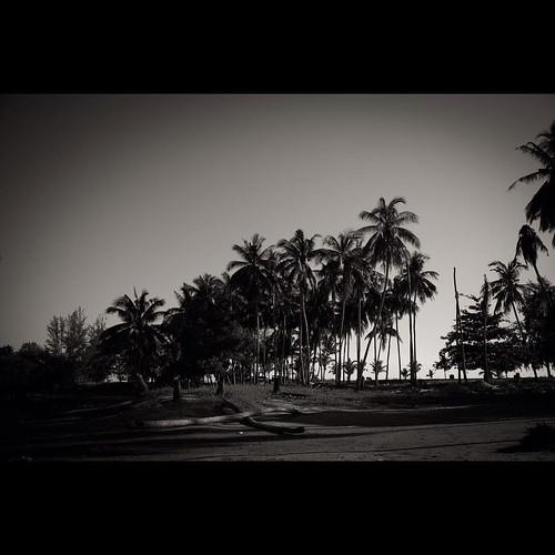 #muara #marang #terengganu #ricoh #gr #ricohgr #bw #bw_malaysia #bnw #blackandwhite #streetphotography #monochrome
