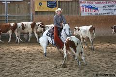 BJ1A9256 (yoann.coin) Tags: horse france western cutting equitation ncha remoray