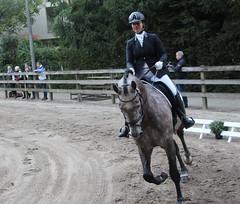 Doorn (Steenvoorde Leen - 2.3 ml views) Tags: horses horse jumping cross doorn pferde pferd reiten manege paard paarden springen 2015 utrechtseheuvelrug sgw dressuur arreche manegedentoom