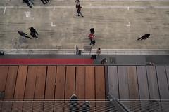 Streetview (FabioK98) Tags: street italy zeiss expo milano sony fabio pavillon 2015