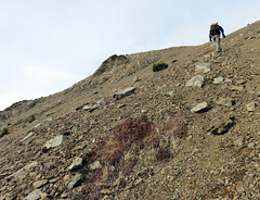 IMG_4516 (Aubrey Sun) Tags: road mountain lake river climb washington peak hike scatter wa twisp abernathy