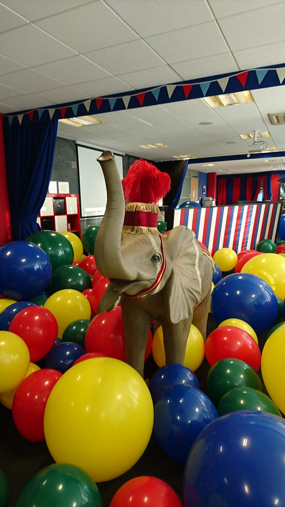 the world u0026 39 s best photos of circus and innovation