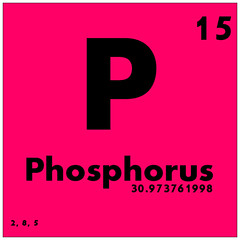 015 Phosphorus - Periodic Table of Elements (Science Activism) Tags: periodictableofelements phosphorus