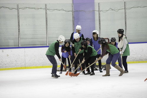 "BroomBall_2015-19 • <a style=""font-size:0.8em;"" href=""http://www.flickr.com/photos/23007797@N00/22807959217/"" target=""_blank"">View on Flickr</a>"