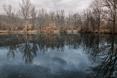Bosque de Finladia (Marta & Eduardo) Tags: españa landscape cloudy paisaje bosque d750 nublado rascafría frio