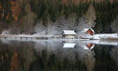 "Weissensee A - ""arriva l'inverno"" (Fabrizio Lucchese 1') Tags: farchtnersee carinzia kärnten natura riflessi austria alpi montagna canon760d inverno fabriziolucchese österreich spiegelung reflection"