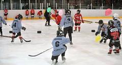 Schnuppertag Kids on ice 19-12-2015 (64)
