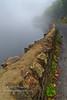 Ard Wall (Shuggie!!) Tags: dykes hdr landscape lochard mistandfog morninglight scotland trossachs walls zenfolio karl williams karlwilliams