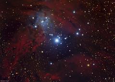 The Fox Fur Nebula (Martin_Heigan) Tags: foxfur nebula ngc2264 monoceros fox unicorn complex nebulae dustandgas stars universe cosmos astroimaging dso deepspace deepsky space telescope pixinsight light astrophotography southernhemisphere southafrica africa processing astrometry martinheigan 2016 astronomy physics science 60da hydrogen sharpless273 mhastrophoto christmastreecluster reflectionnebula emissionnebula astrometrydotnet:id=nova1871272 astrometrydotnet:status=solved