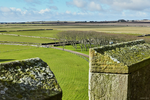 The view from Ackergill Tower