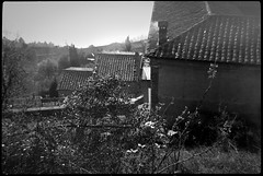into the sun, looking down, red tile roofs, architetural forms, Cortona, Tuscany, Italy, Bencini Koroll 24S, Fomapan 200, Moersch Eco Film Developer, mid December 2016 (steve aimone) Tags: lookingdown intothesun architecture architecturalforms redtileroofs cortona tuscany italy bencinikoroll24s fomapan200 moerschecofilmdeveloper monochrome monochromatic mediumformat blackandwhite 120 120film film