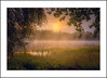 Misty morning (andreassofus) Tags: nature landscape grandlandscape intimatelandscape mist misty mistymorning fog foggy water lake reflections sunrise sun light naturallight sunlight trees frame framing grass sweden autumn fall latesummer värmland töcksfors outdoor natural beautiful horizon forest woods green color colorful scene scendinavia canon canon2470f4l canon2470f4lcanon6d