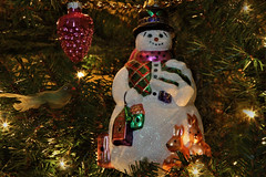 Merry Christmas Flickr Friends (Jan Nagalski) Tags: christmas hanukkah merrychristmas joyeuxnoel feliznavidad holiday snowman christmastree pinecone ornaments lights bird jannagalski jannagal
