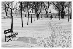 Zimska priča - Winter story (coa75) Tags: winter cold snow ice park blackwhite bench trees footsteps traces perspective path shadows