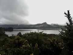 Represa del Neusa, Colombia. (sadday_ksg) Tags: tree nature naturaleza laguna lago