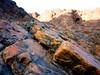 Rocks, Oman (2) / Камни, Оман (2) (Irina.yaNeya) Tags: mountains montaña mountain montañas rocks rocas oman omán macro closeup primerplano وعنقرب ماكرو عمان صخور جبل камни горы гора оман макро