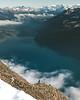 The King of the Alps (noberson) Tags: ibex steinbock alpine capricorn alps switzerland lake mountains blue winter augstmatthorn brienzergrat view landscape amazing animal