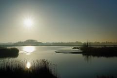 Die Sonne wird jeden Tag wieder aufgehen, auch 2017. Ein gesundes, friedliches neues Jahr. (detlefgabriel17) Tags: sun sonne backlight river fluss reflections reflektionen oste riveroste niedersachsen lowersaxony germany morgen morning water